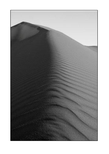 Seiten 12 - 16 Vorwort und Südafrika [pdf 86 kb] - Sandneurosen