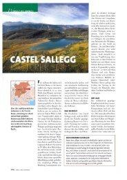 La Cucina Italiana 3-2011 - Castel Sallegg