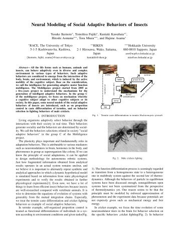 Neural Modeling of Social Adaptive Behaviors of Insects