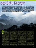 Dschungel-Expedition mitten ins Herz von Borneo - Dominique Wirz - Seite 2