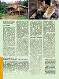 Dschungel-Expedition mitten ins Herz von Borneo - Dominique Wirz - Seite 5