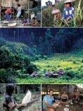Dschungel-Expedition mitten ins Herz von Borneo - Dominique Wirz - Seite 6