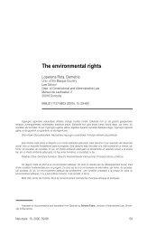 The environmental rights. IN: The sustainable development of ...