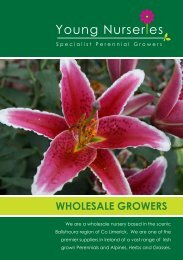 Download Catalogue - Young Nurseries