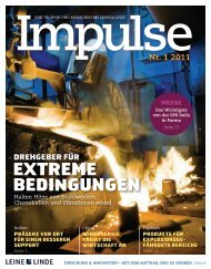 Impulse Nr. 1 - 2011 (PDF) - Leine & Linde