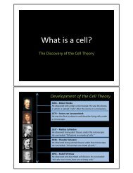 What is a cell? - nnhsbergbio