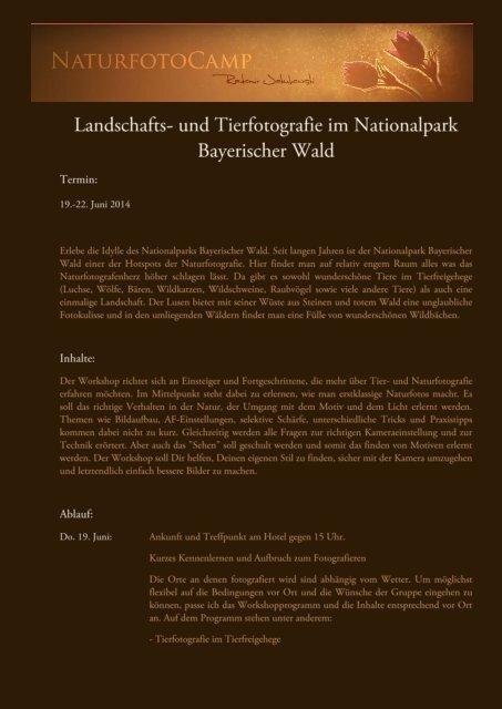 und Tierfotografie im Nationalpark Bayerischer Wald