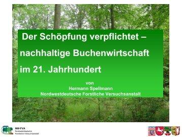 Der Schöpfung verpflichtet – nachhaltige ... - Niedersachsen