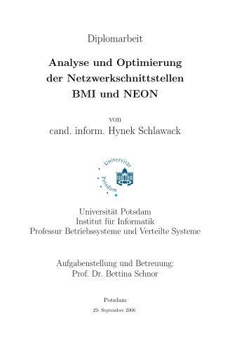Diplomarbeit Analyse und Optimierung der ... - Hynek Schlawack