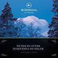 no ser eg atter slike fjell og dalar - Blåfjellia
