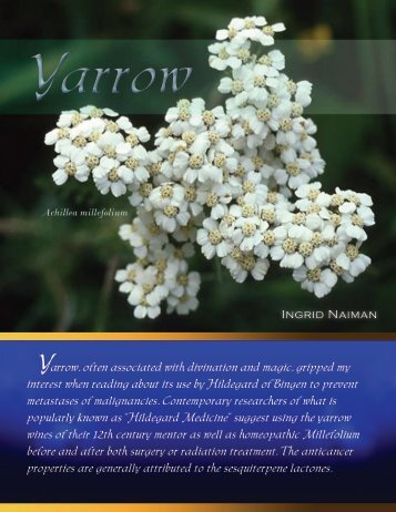 Ingrid Naiman Yarrow, often associated with ... - Subscription