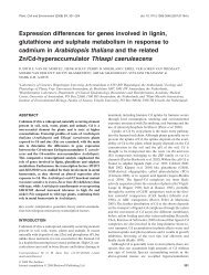 Expression differences for genes involved in lignin, glutathione and ...