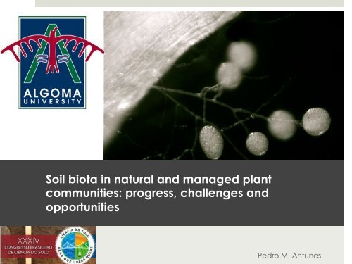 Soil biota in natural and managed plant communities ... - CBCS 2013