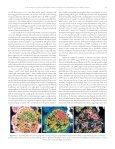 GEOCIENCIAS DIC 2010-COLOR.vp - Facultad de Ciencias ... - Page 5