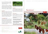 Informasjonsbrosjyre om pærebrann (PDF) - Mattilsynet
