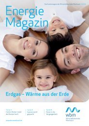 03/2013 zum Download (PDF) - wbm