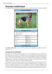 Deutscher Schäferhund - Hundehilfe Nordbalaton e.V.