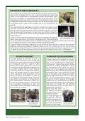 Nachrichtenblatt 20 - Auwaldstation Leipzig - Seite 3