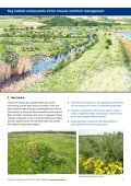 Coastal grazing marsh - Buglife - Page 2