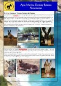 Agia Marina Donkey Rescue Newsletter - Page 3