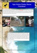 Agia Marina Donkey Rescue Newsletter - Page 4