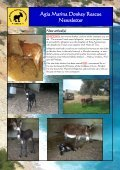 Agia Marina Donkey Rescue Newsletter - Page 5