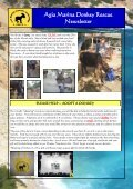 Agia Marina Donkey Rescue Newsletter - Page 7