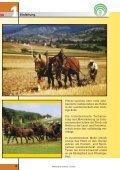 Pferdehaltung - SVLFG - Page 6