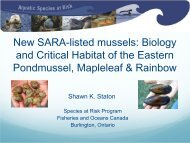 New SARA-listed mussels: Biology and Critical Habitat of the ...