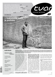 Tvar 17/2008