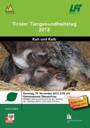 Infos und Programm zum Tiroler ... - Braunvieh Tirol