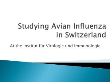 Fratzke -Studying Avian Influenza in Switzerland.pdf