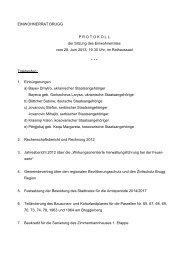 Protokoll der Sitzung vom 28. Juni 2013 - Brugg