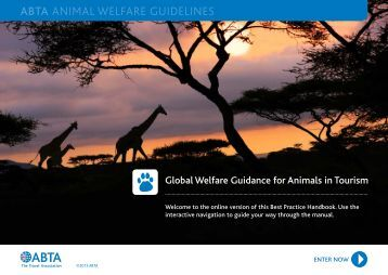 ABTA ANIMAL WELFARE GUIDELINES