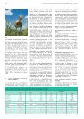 ornithologischer jahresbericht 2007 - Page 4