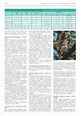 ornithologischer jahresbericht 2007 - Page 6