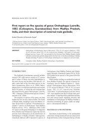 First report on five species of genus Onthophagus Latreille, 1802