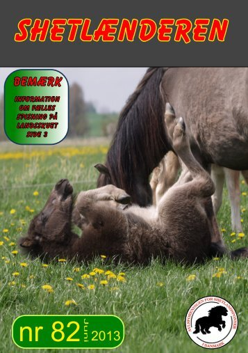 Nr. 82 juni 2013 - Shetlandspony