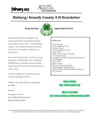 February 2013 4-H Newsletter - Kleberg and Kenedy Counties ...