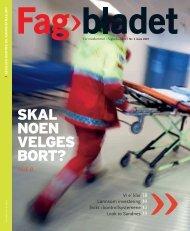 Fagbladet 2007 03 KON