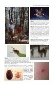 An Insider's Guide to Tickborne Illnesses - Allegory Press LLC - Page 7