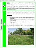 Pieds d'arbres et accotements routiers - Etat de Genève - Page 3