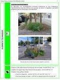 Pieds d'arbres et accotements routiers - Etat de Genève - Page 7