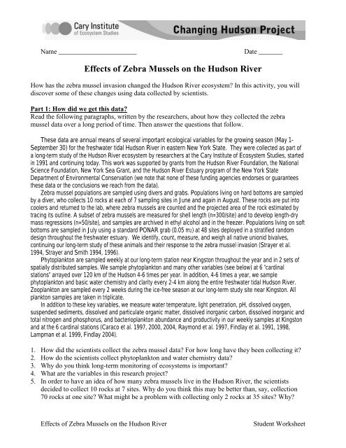 Effects of Zebra Mussels on the Hudson River - Cary ...
