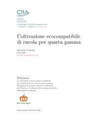 Coltivazione ecocompatibile di rucola per quarta gamma - Regione ...