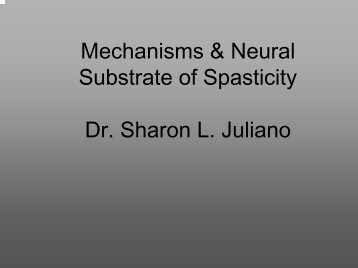 Mechanisms and neural substrate of spasticity