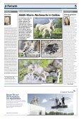 Anzeiger Luzern, Ausgabe 27, 10. Juli 2013 - Page 5