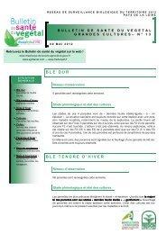 BLE DUR BLE TENDRE D'HIVER - Agri 72