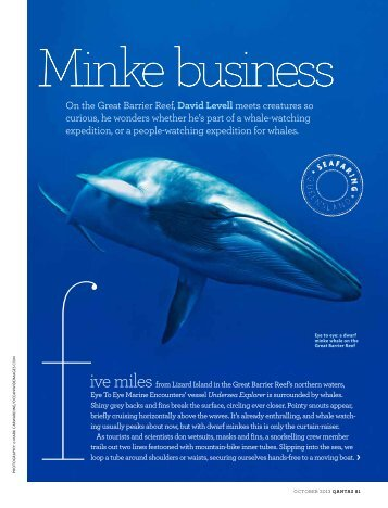 Qantas Magazine Article. - Eye to Eye Marine Encounters