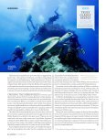 Qantas Magazine Article. - Eye to Eye Marine Encounters - Page 3